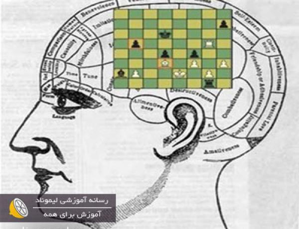 ۷ مورد از فواید شطرنج برای ذهن و مغز